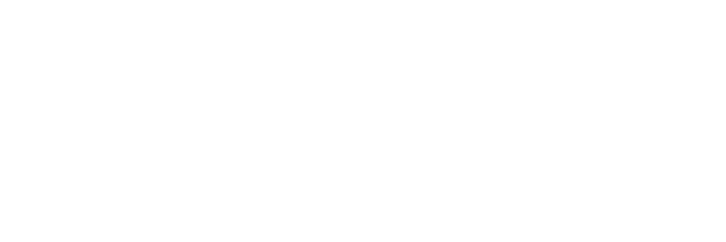 Castorama2